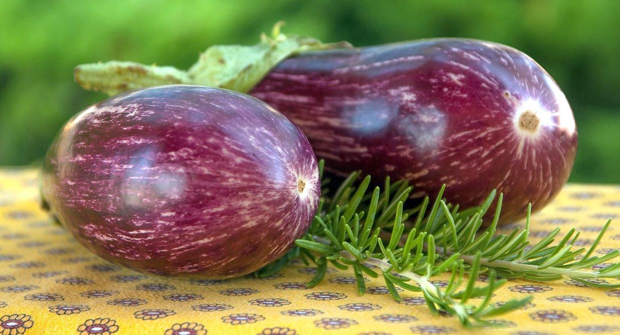 Nutrition And Health Benefits Of Eggplants Leuza Kyne